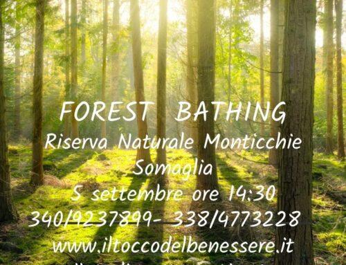 BAGNO DI FORESTA  – RISERVA NATURALE MONTICCHIE  5 SETTEMBRE 2021 ORE 14:30