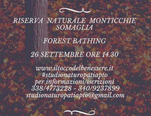 Forest Bathing 26 settembre Riserva Naturale Monticchie